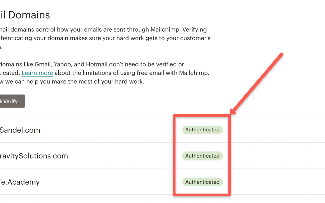 Setting Up Your DMARC, SPF, and DKIM In MailChimp & Klaviyo to Avoid the Spam Folder